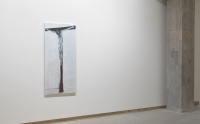 Frith Street Gallery, Forsaken, 2011