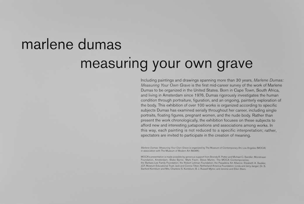 MOCA Los Angeles, Measuring your own Grave, 2008