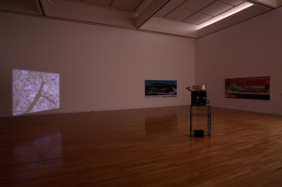 <i>Broken White</i>, Museum of Contemporary Art Tokyo, 2007 (Solo exhibition)